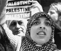 palestine - bill hackwell