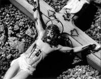 wojnarowicz cross